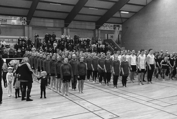 lindholm gymnastik